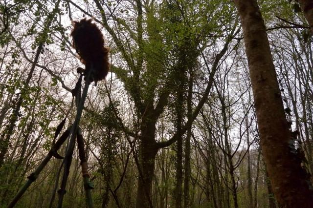 Captation 3D en forêt.JPG