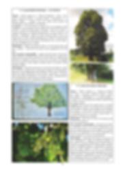 Pascal DHUICQ - MémoTopic - Valorisation du patrimoine naturel