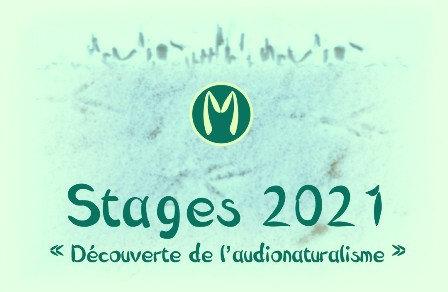 Stage audionaturaliste WE