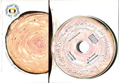 Carte postale sonore MémoTopic La Cote de Granit Rose verso