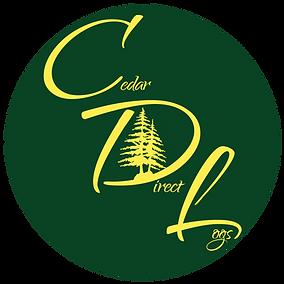 CDI-Logo-Circle-yellow-Transparent-New-y