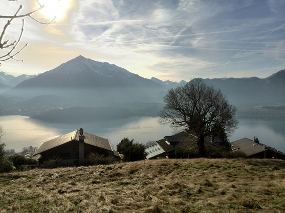 Niesen, Thunersee, Berner Alpen, Immobilien