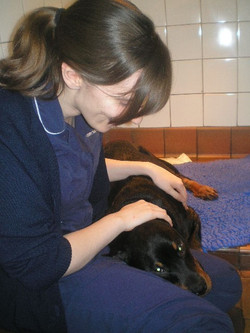 Jess and Lotte rottie