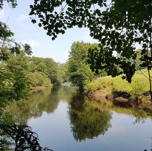 River Hodder... a mindful walk