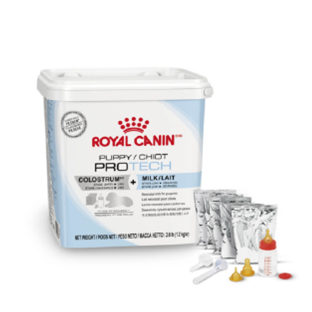 Royal Canin PRO Puppy Protech Colostrum 300 gr