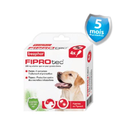 Fiprotec Pipettes FIPROTEC Antipuces et Anti-tiques Grand Chien20-40kg