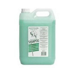 Shampooing GOTTLIEB Pine 5LT