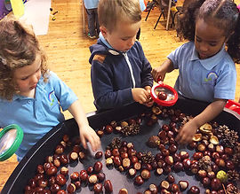 St Anthony's Pre-School Nature Learning