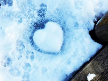 Jede Liebe verblüht – 5 Gründe, weshalb Beziehungen zwischen Kunde und Agentur meist scheitern.