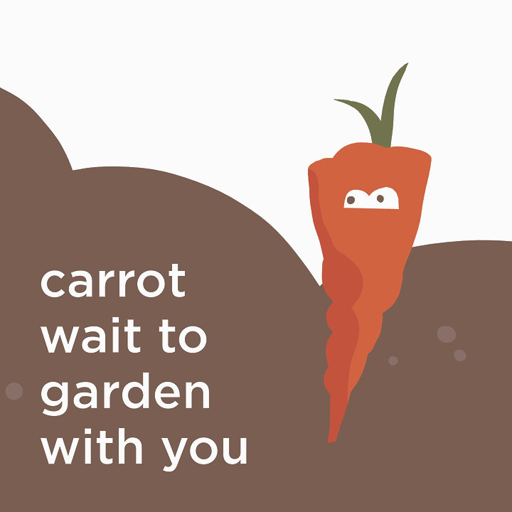 carrot wait to garden with you IGnomouth