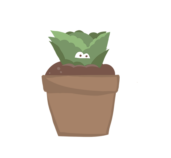 Individual Potted Plants