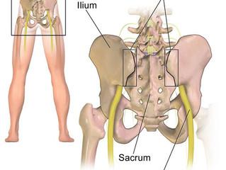 The Sacroiliac Joint