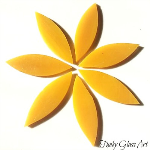 Stained Glass Large Petals -Mango Nectar
