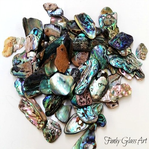Paua Pieces - Small