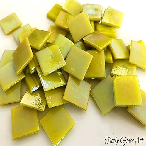 Iridescent Yellow 20x20