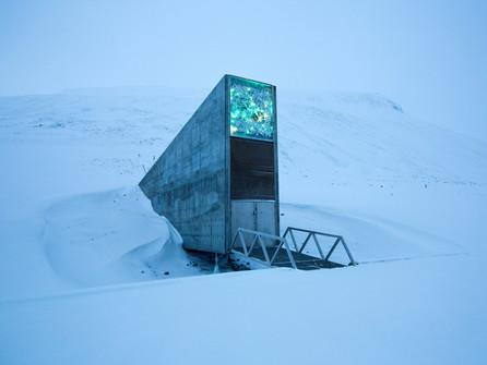 Biodiversity under the ice!