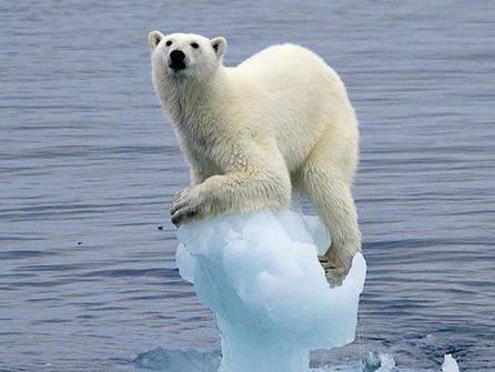 Melting Arctic: