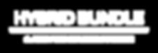 HYBRID BUNDLE-logo-white.png