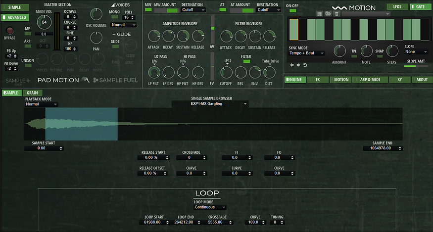 PM 3.0 SAMPLE ADVANCED SYNTH PAGE.PNG