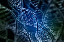 Regenerative medicine & med tech