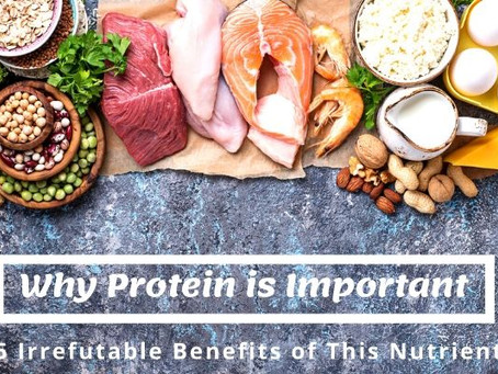 Why Protein is Important – 5 Irrefutable Benefits of This Nutrient