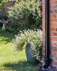 cottage ramsbury.jpg