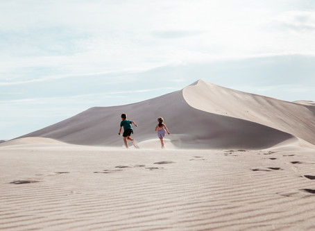 The Amargosa Valley Sand Dunes, Nevada