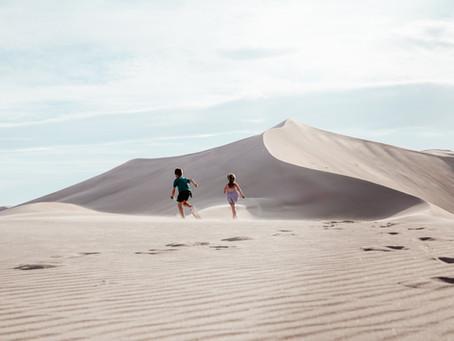 The Amargosa Valley Sand Dunes, Nevada