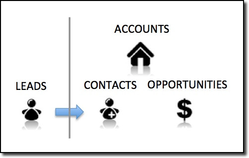 How Salesforce is organized: Leads, Accounts, Contacts, and Opportunities