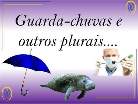 Guarda-chuvas e outros plurais...