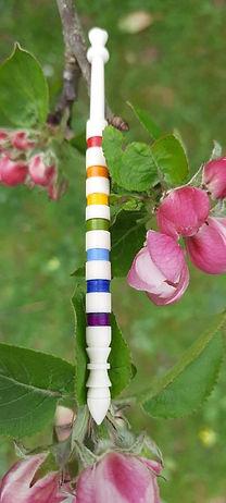 Rainbow Apple Blossom.jpg