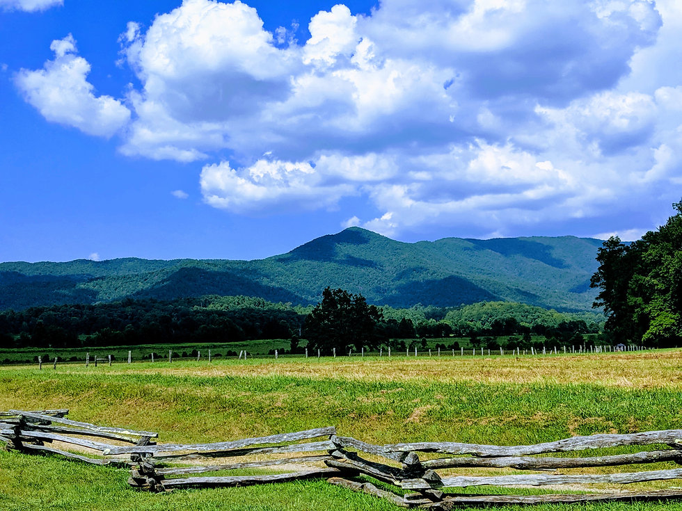 43 - Cades Cove in GSMNP.jpg