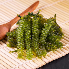 Les algues alimentaires