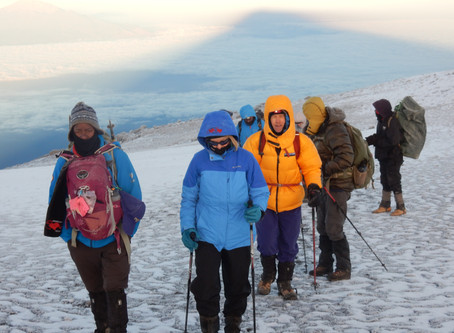 Mt. Kilimanjaro Trek – Adult Heart Survivor