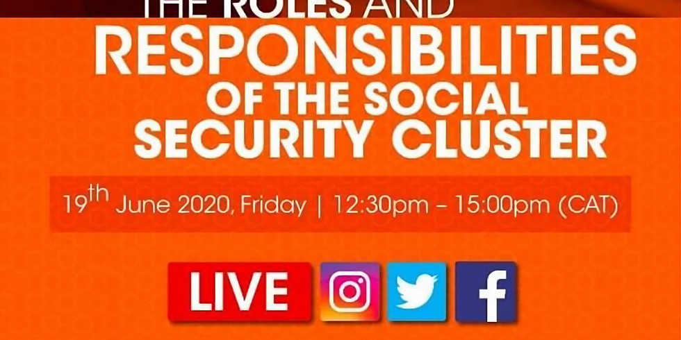 The roles and responsibilities of the social security cluster