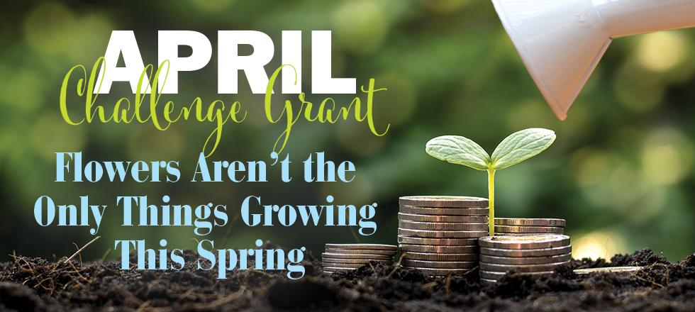 3-26-21 Spring Challenge 980x440-1 (1).p