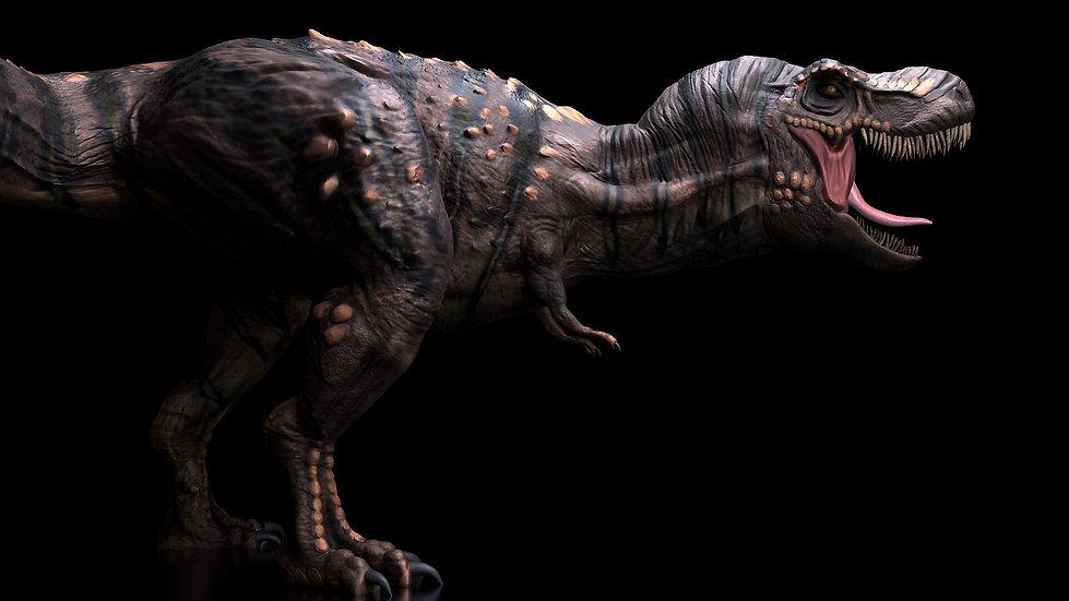 josette-ortega-t-rex-camera-5-hd.jpg_155
