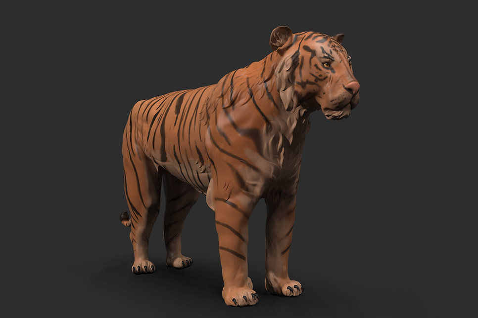 josette-ortega-tiger-render-v3-96.jpg_15