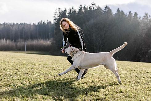 2020-12-06_Michaela Knosp_Hundetraining