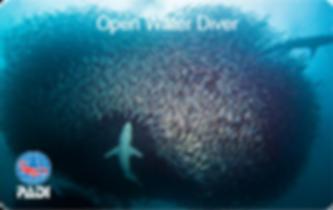 PADI Open Water Baitball CC.png