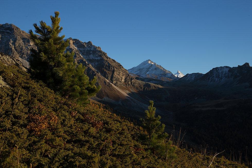 paysage montagne chocolat.jpg