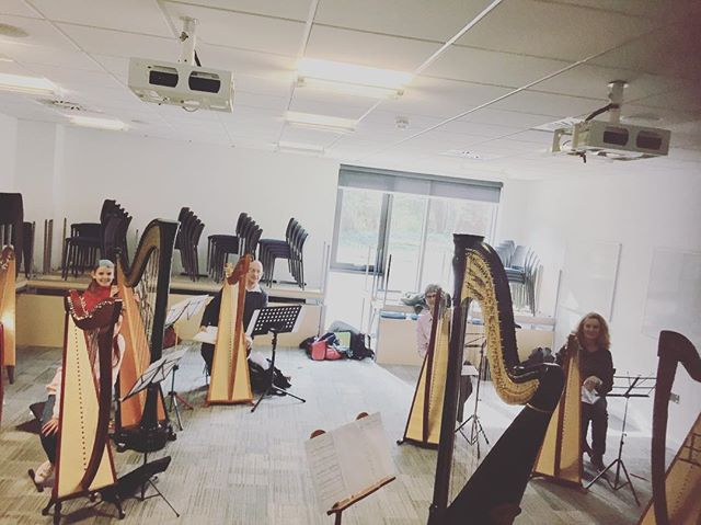 Wonderful first class at the Camac harp