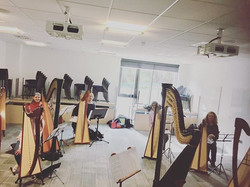 Wonderful first class at the Camac harp