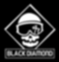 Black Diamond Logo Black with Font Final