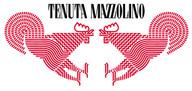 TENUTA MAZZOLINO Wine Shop Online