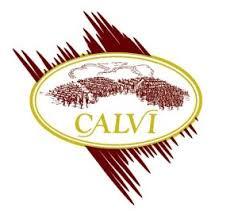 Calvi_logo.jpg