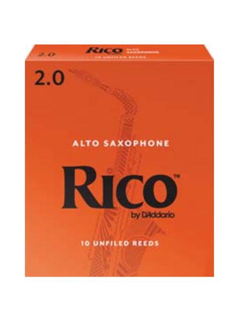 Bb Clarinet - Rico Reeds