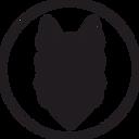 логотп про.png