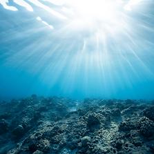 השפע באוקיינוס הכחול - דף לבן.png