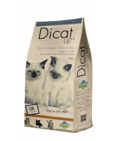 Dicat Up KITTY 1,5 kg